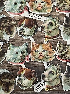 Vintage Maybe Victorian Scraps For Scrapbook Die Cut Cats & Dogs