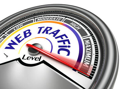 Unlimited Daily Web Traffic Hits For Your Website For 30 Days (Real Visits)