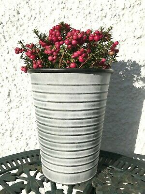 Set 2 Small French Vintage Style Zinc Metal Planter Trough Plant Pot Container