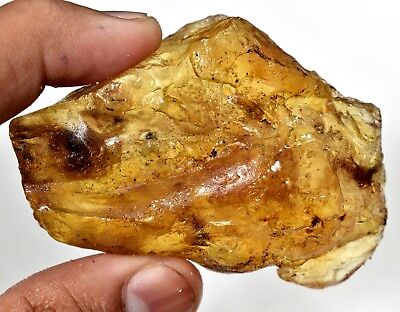 158.45 CT Natural Baltic Amber With Insect Inside Old Year Untreated