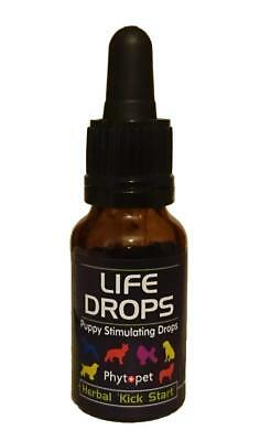 Phytopet Life Drops for Stimulating Puppies - Herbal Kick Start - 10ml