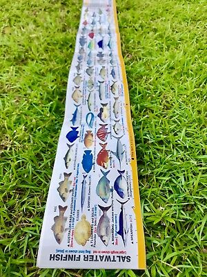 """fishing guide ruler sticker for boat, Esky, Jetski Ect Great Colourful""""Free Post"""