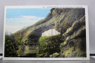 Tennessee TN Mountains Natural Bridge Postcard Old Vintage Card View Standard PC