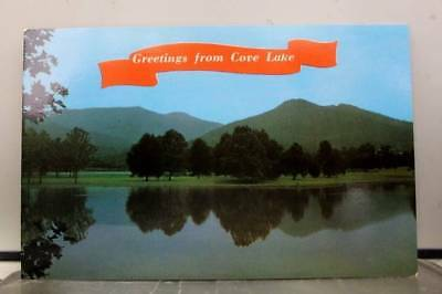 Tennessee TN Cove Lake State Park Postcard Old Vintage Card View Standard Post