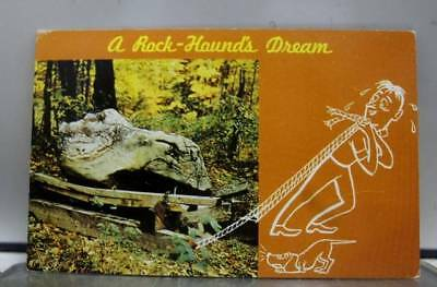 Scenic Rock Hounds Dream Postcard Old Vintage Card View Standard Souvenir Postal