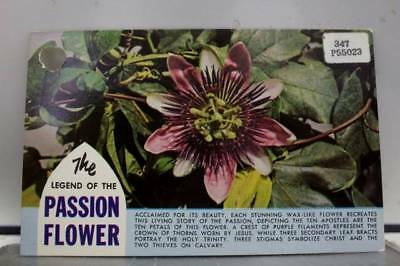 Hawaii HI Legend of Passion Flower Postcard Old Vintage Card View Standard Post