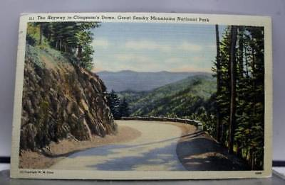 Great Smoky Mountain Park Clingmans Dome Postcard Old Vintage Card View Standard