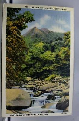 Great Smoky Mountain Park Chimney Tops Postcard Old Vintage Card View Standard