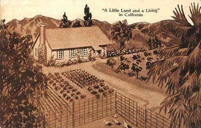 Little Farms Magazine Ad Los Angeles, CA Land & A Living c1910s Vintage Postcard
