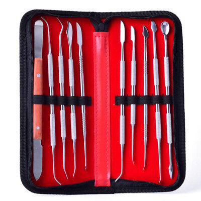 10 Pcs/Set Stainless steel Dental Lab Equipment Wax Carving Tools Dentist 8C
