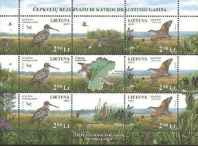 Lithuania - 2007 - Birds - Miniature sheet - MNH