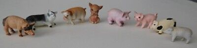 Lot of 8 Miniature Pigs