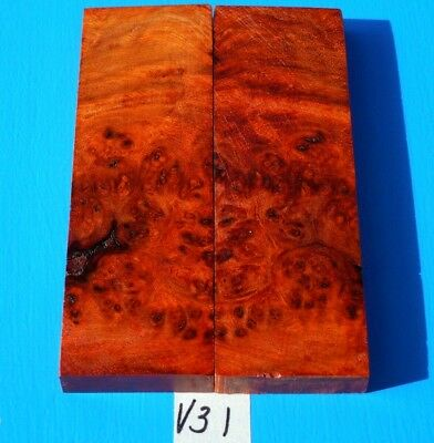 1 Pair Knife Scales~Colorful Amboyna Burl~Knife Blank Handle Grips~Exotic Wood