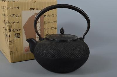 R6278: Japanese Iron Arare pattern TEA KETTLE Teapot Tetsubin Tea Ceremony