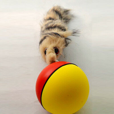 Rolling Ball Pet Dog Cat Weasel Motorized Appears Jump Mouse Alive Toy 8x21cm