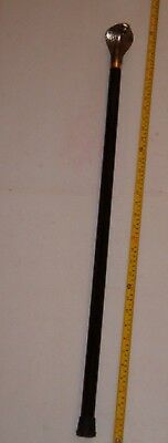 "34"" Hooded Cobra Walking Cane /Stick, FREE SHIPPING !!!!"
