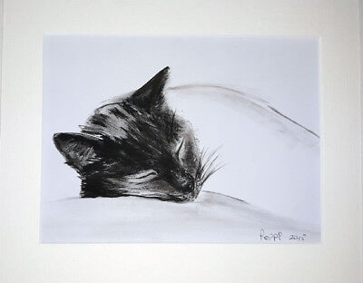 ORIGINAL ART DRAWING * CHARCOAL on  paper * SLEEPING KITTEN