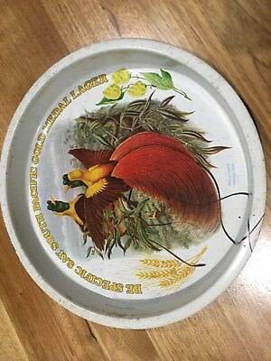 Beer Tray , South Pacific Lager
