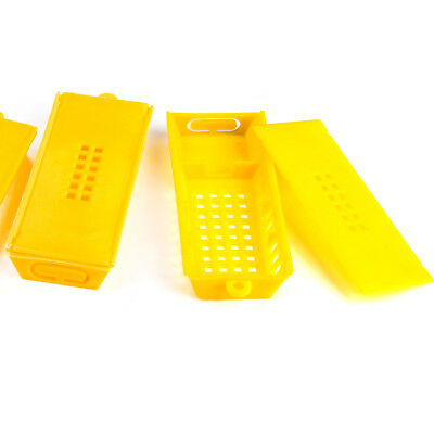 10pcs Professional Queen Bee Butler Cage Moving Catcher Beekeeping