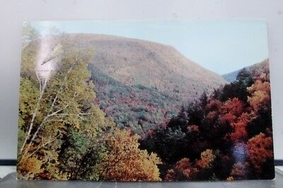 New York NY Kaaterskill Clove Catskill Mountains Postcard Old Vintage Card View