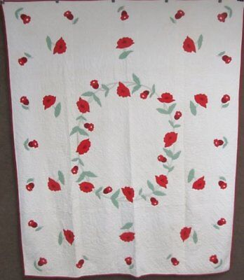 Red Poppy! c 1930s Applique Vintage QUILT Webster Inspired