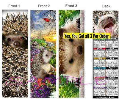 3 Lot-Hedgehog 2019 CALENDAR BOOKMARK Small Pet Animal Art Fun Card Perfect Gift