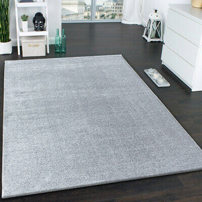Modern Grey Rug Plain Contour Cut
