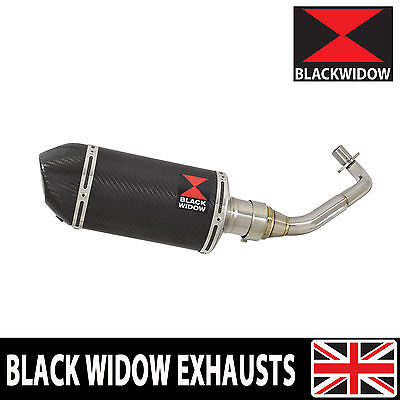 Piaggio Vespa GTS 125 4T 2007-2016 Oval Carbon Fibre End Can Silencer 200CT