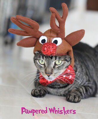 """reindeer costume for cats and dogs 10-14"""" collar size"""