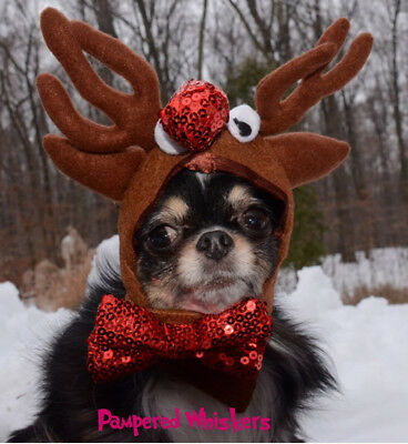 """Reindeer antlers for cats and dogs 6-10"""" collar size"""