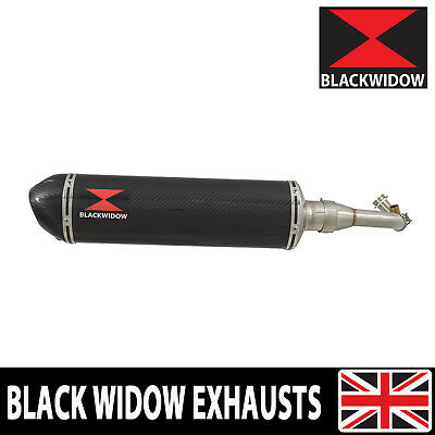 Piaggio Vespa GTS 250 2005 - 2016 Oval Carbon Fibre End Can Silencer 400CT