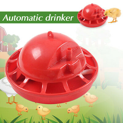 Chicken Drinking Fountain 1 Set Automatic Chick Brooder Drinking Fountain New