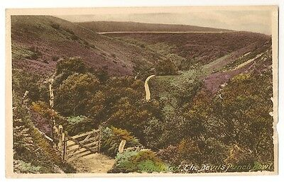 Vintage Postcard of The Devil's Punch Bowl, Nr Hindhead, Surrey - Local