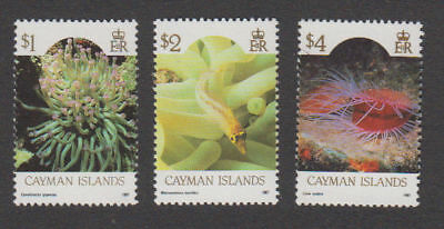 Cayman Is. - 1987 Definitive High Values. Sc. #571a,2,a,3a, SG #644-6. Mint NH