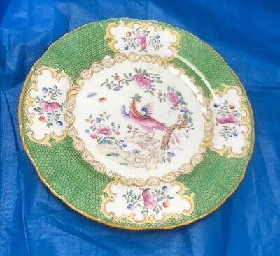"""Minton Cockatrice 7"""" Highly Decorative & Colourful Side Plate  Rare  """"Sale"""""""