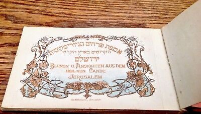 Antique Olive wood booklet 'flowers from the holy land '12 colour lithographs