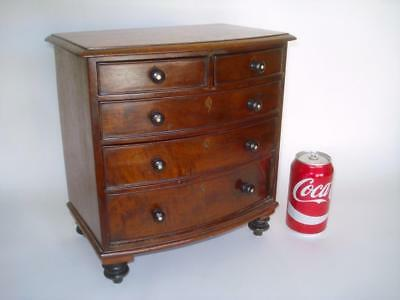 Fine Antique William Iv Miniature Mahogany Bow Front Jewelry Chest 1830