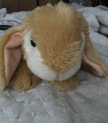 Animal Alley  Lop Bunny Rabbit Bean Stuffed Stub Tail 2008 Easter