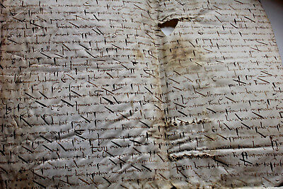 1519 Very Large oncial gothic medieval manuscript parchment skin letter document