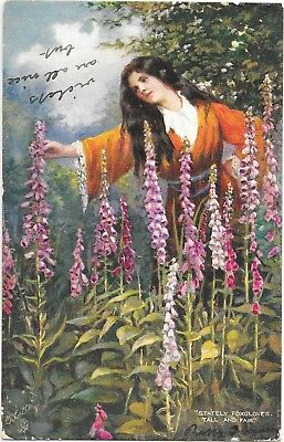 Tucks's Illustrated Songs. Stately Foxgloves, Tall and Fair, Post Used 1905