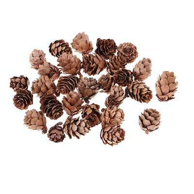 150x Natural Pine Cones In Bulk For Home Decoration Wedding Ornament