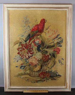 Large 19thC Antique Victorian Period Plush-work Embroidery Life Size Parrot, NR