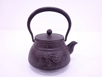 3895029: Japanese Sencha Iron Ware Tea Pot / Nanbu Tekki