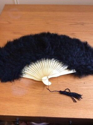 Yellow And Black Feather Fan