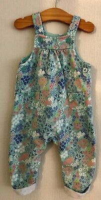 Baby Girls Age 6-9 Months Bluezoo Debenhams Floral Pale Green Dungarees
