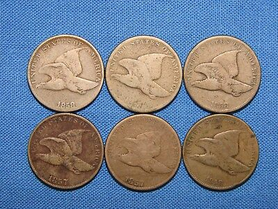 *nice Assorted Lot Of 1857 & 1858 Flying Eagle One Cent Pennies*
