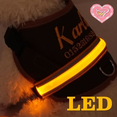 Dog anti Print Soft Harness Chest Request Name Embroidered Leather Led S-M