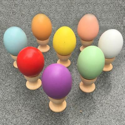 Wooden Chicken Hen Eggs Easter Decor Unfinished Wood DIY Toy Decorative New JJ