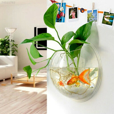 F3E5 Creative Glass Flower Planter Vase Terrarium Container Garden Wall Decor