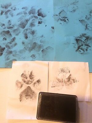Baby or Paw Print ink Pad - print Photo. Great for dog & cats paws.
